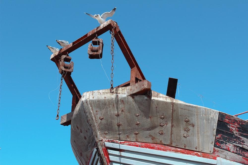white bird on brown metal ship during daytime