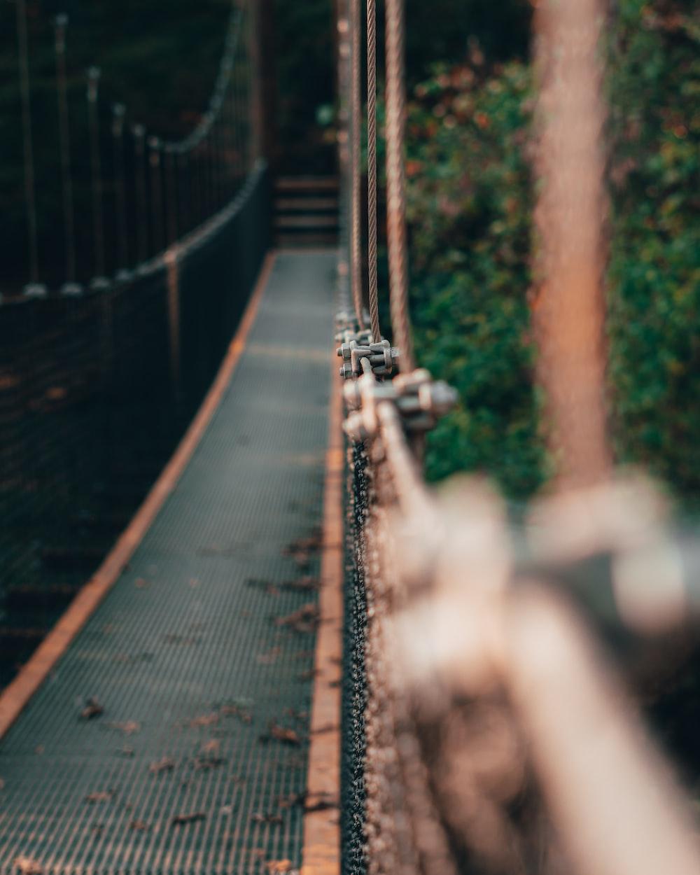 selective-focus photograph of hanging bridge