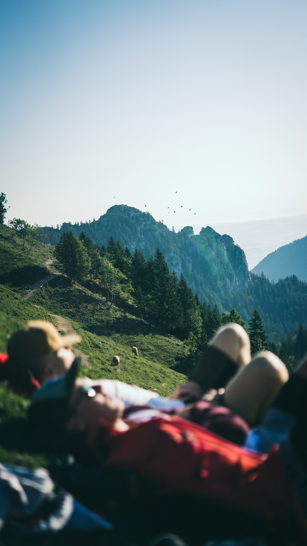 two people lying on green field viewing mountain during daytime
