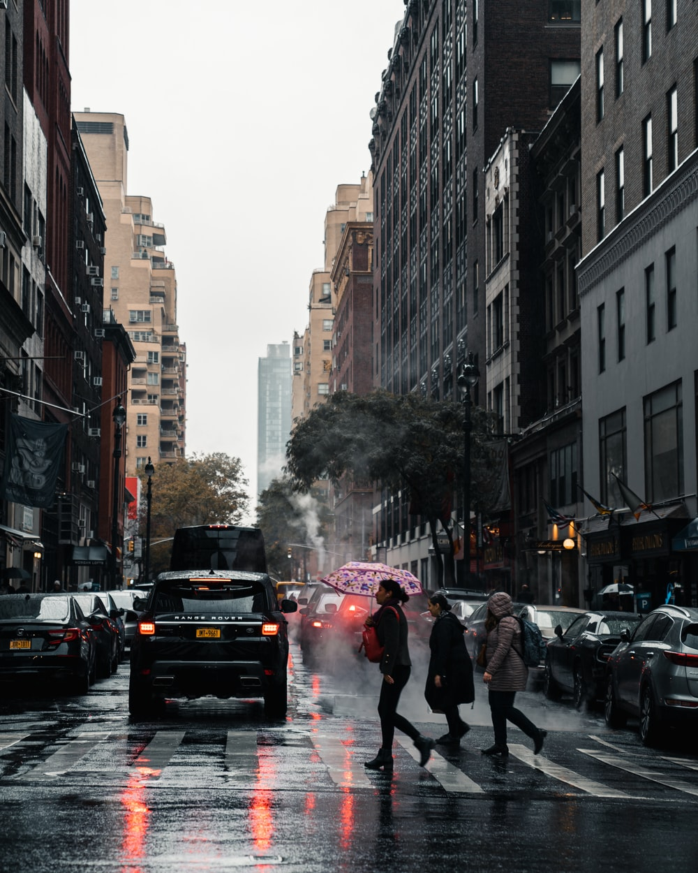 people crossing street during daytime