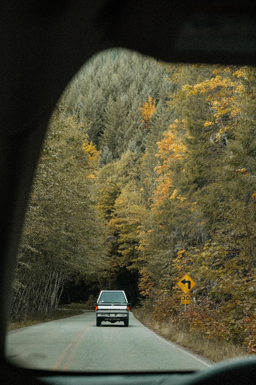 vehicle on road near trees