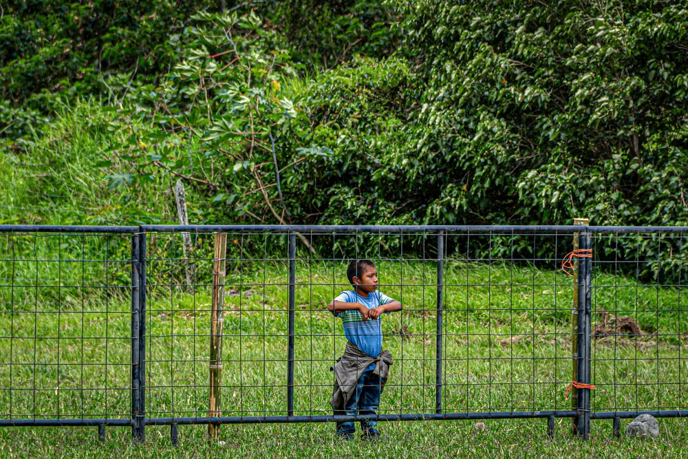 boy standing in front of blue mesh-link fence
