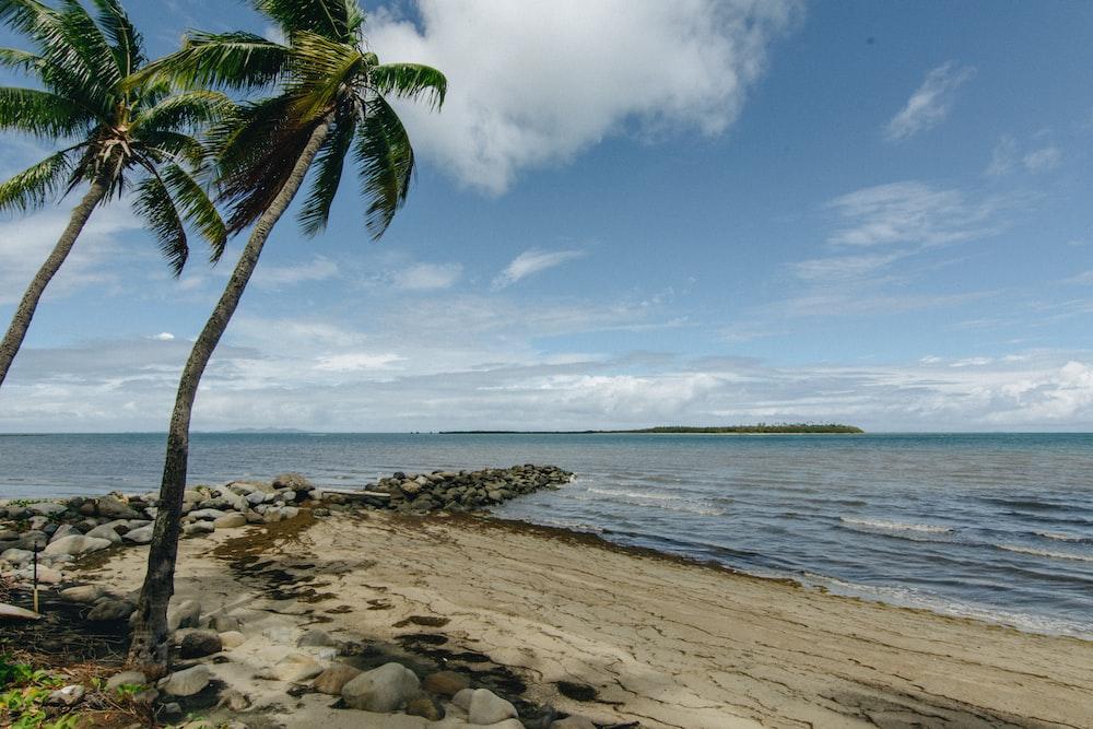 photography of seashore during daytime during daytime