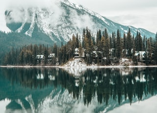 icy mountain and lake with pine trees