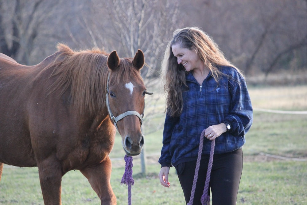woman holding brown horse