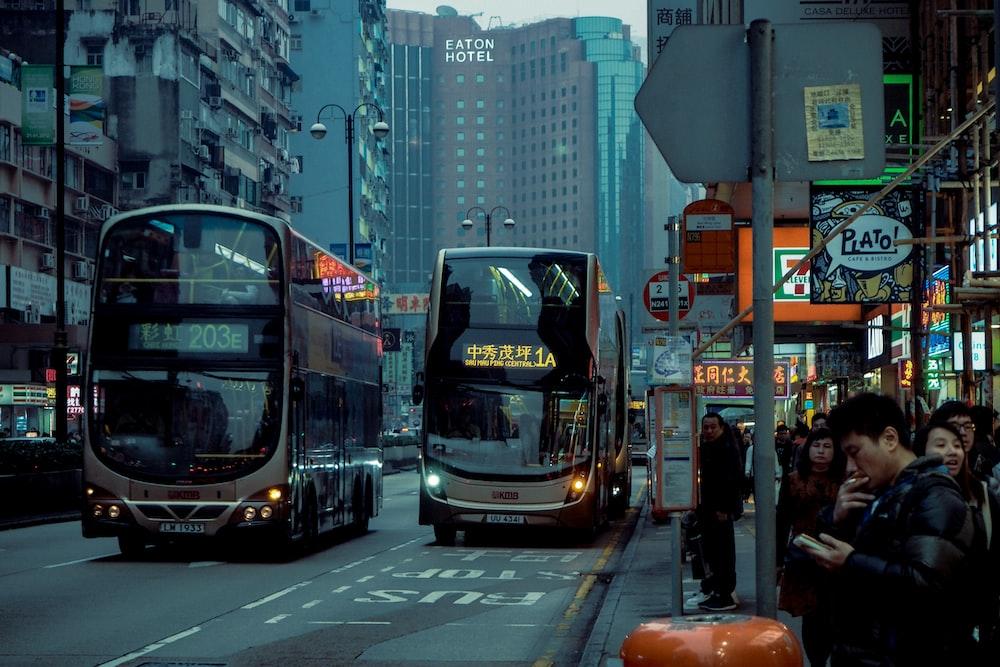 photo of transit buses