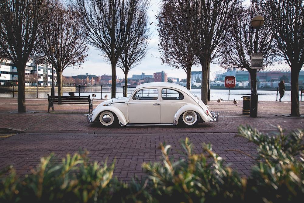 white Volkswagen Beetle near bare trees