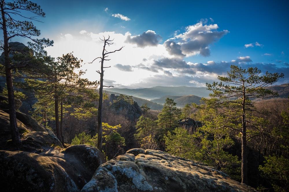 photo of mountain slope