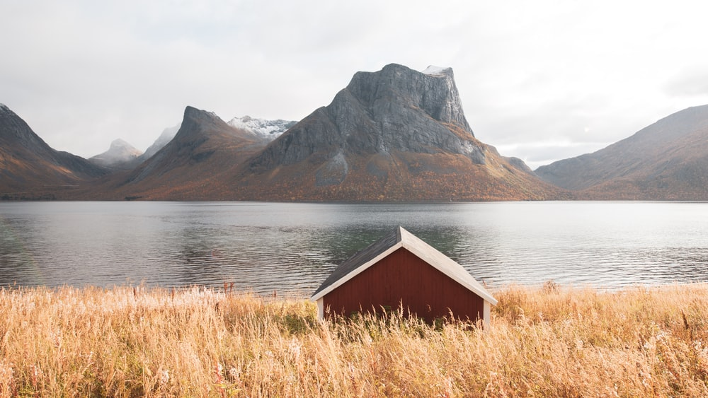 brown wooden shack beside body of water