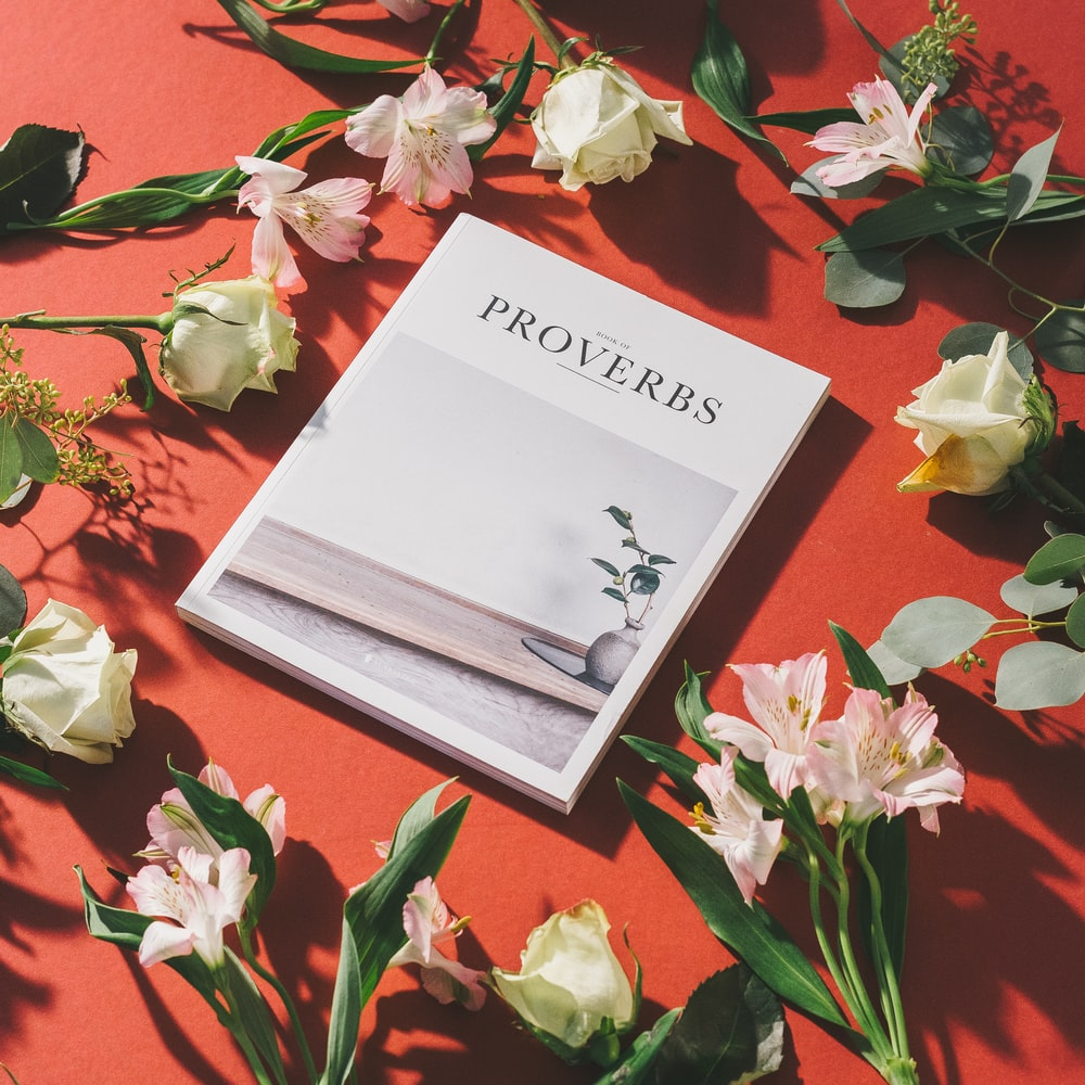 Proverbs book surrounded of white flowers