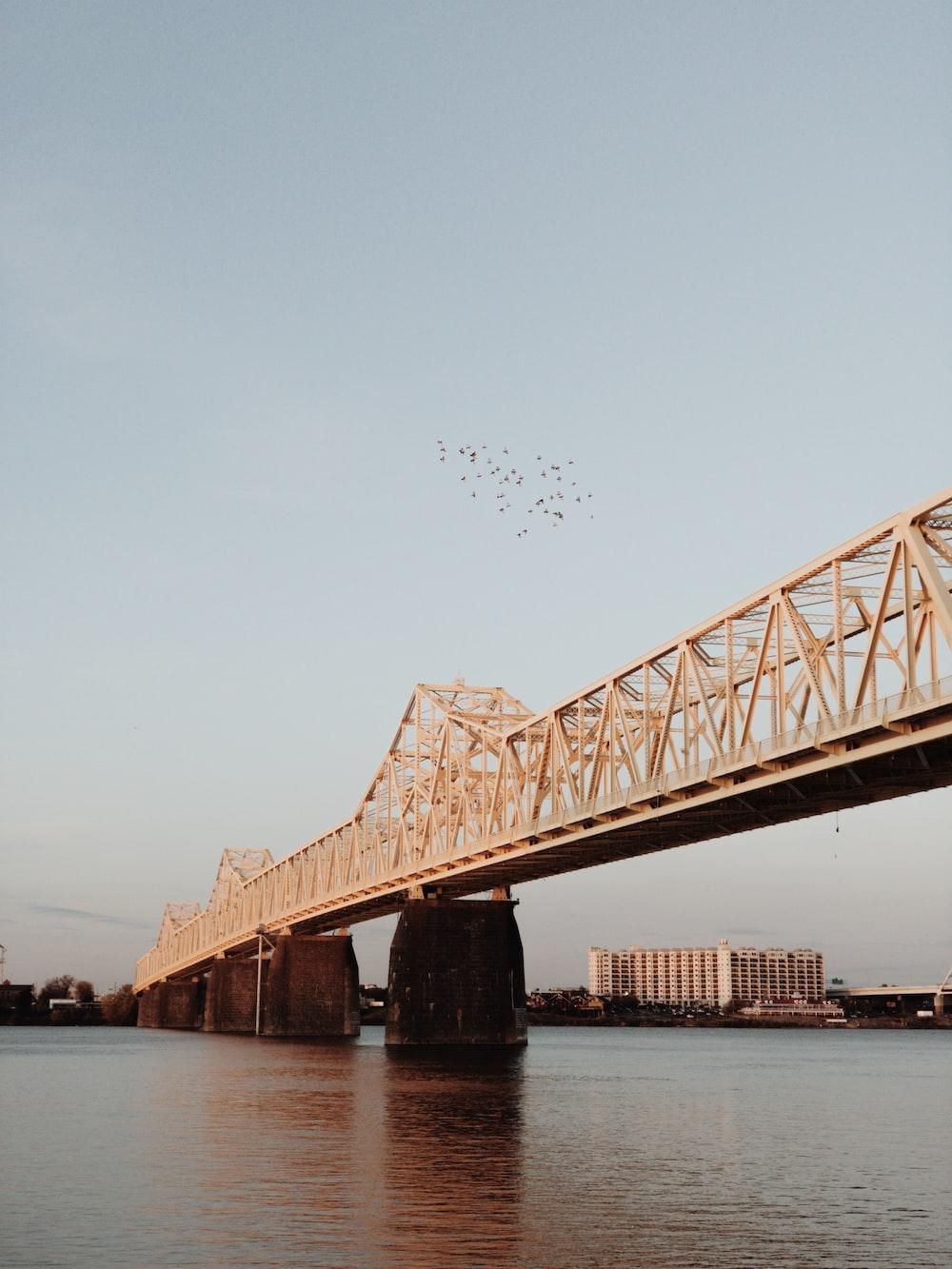 brown steel bridge during daytime