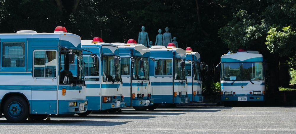 photo of white and blue transit buses