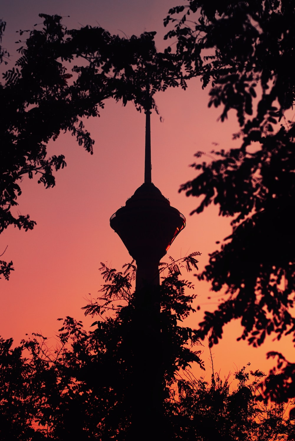 silhouette of tower and trees