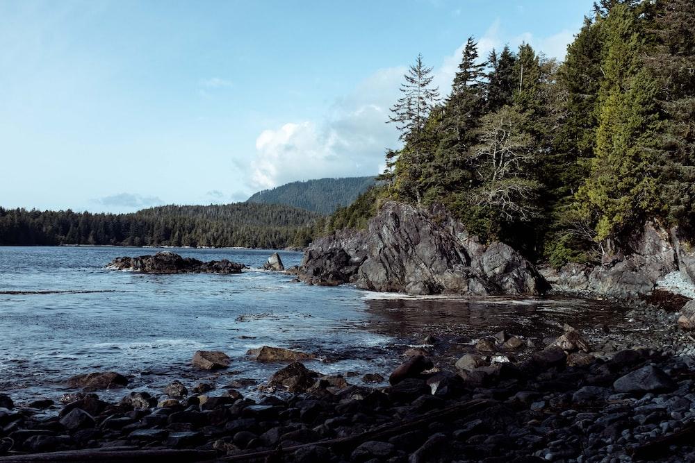 Tình bang British Columbia - đề cử tỉnh bang BC PNP