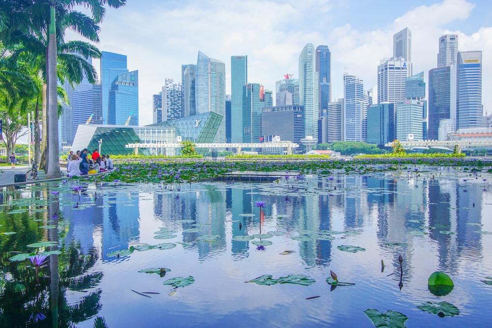 photo of city and lake scenery