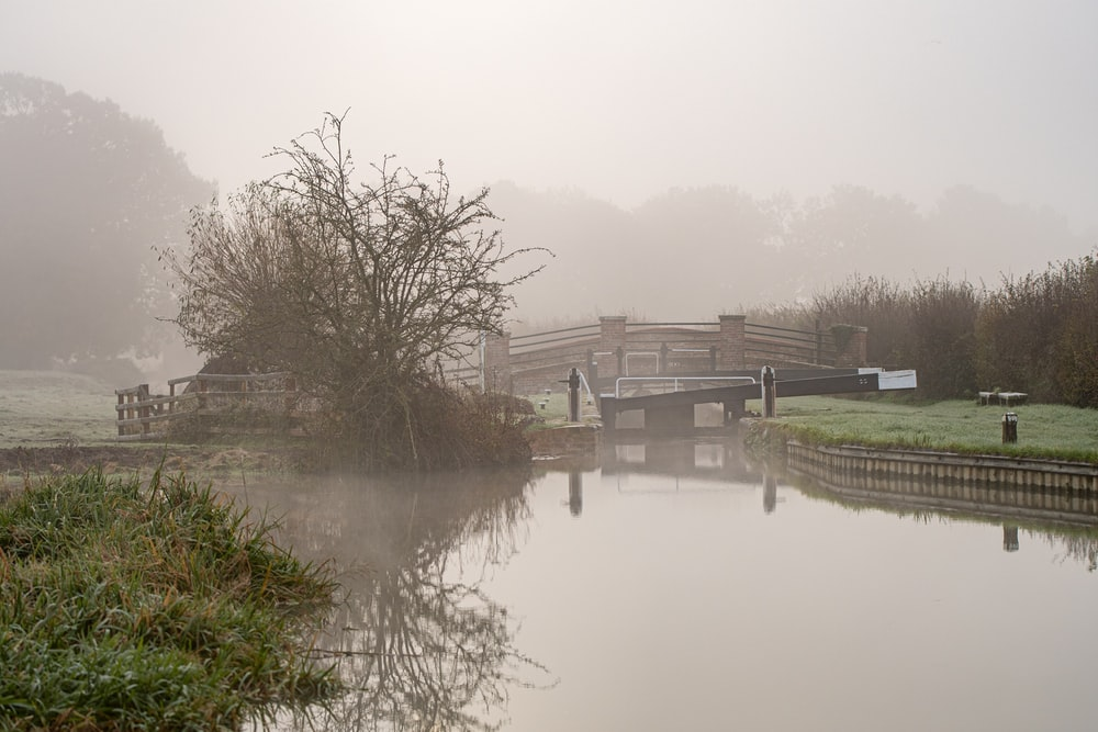 lack and brown bridge