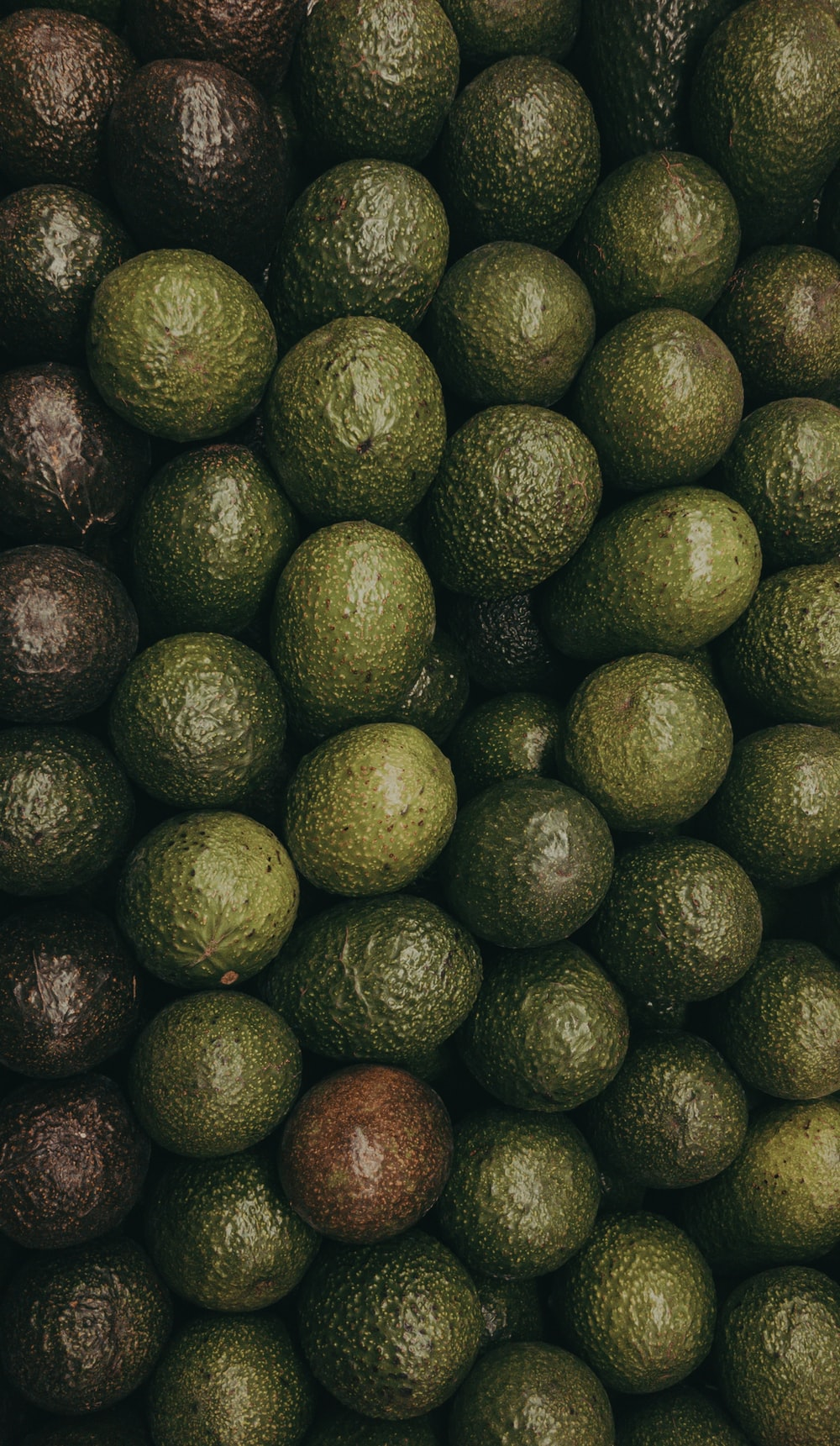 green and purple avocado fruit lot