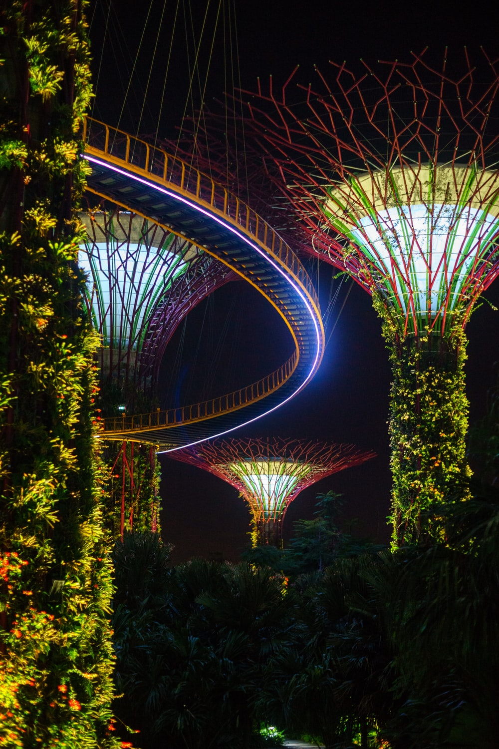 Garden by the Bay at night time
