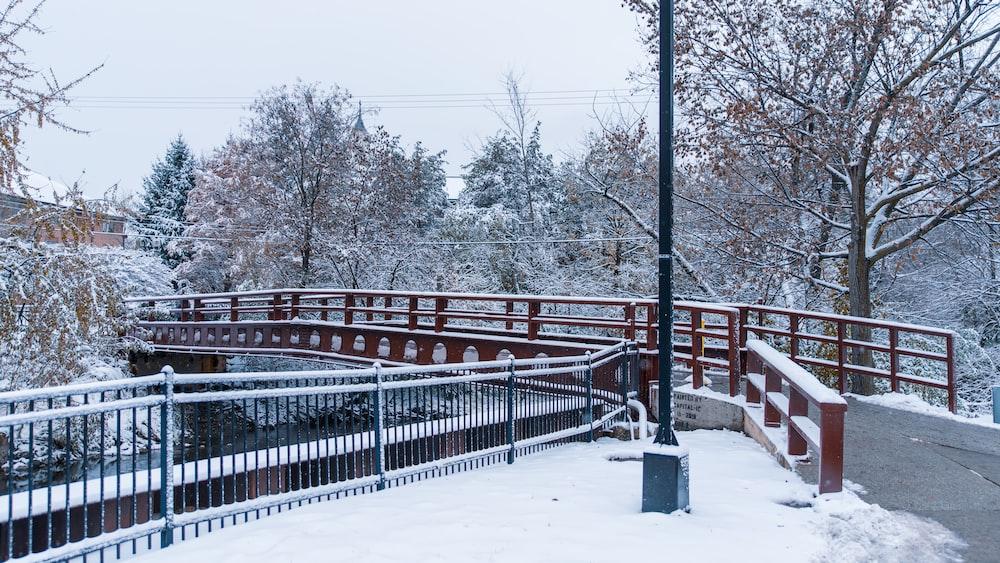 red and gray bridge