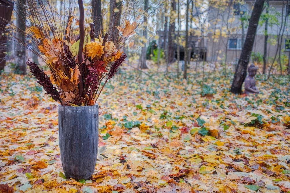 brown twigs in vase