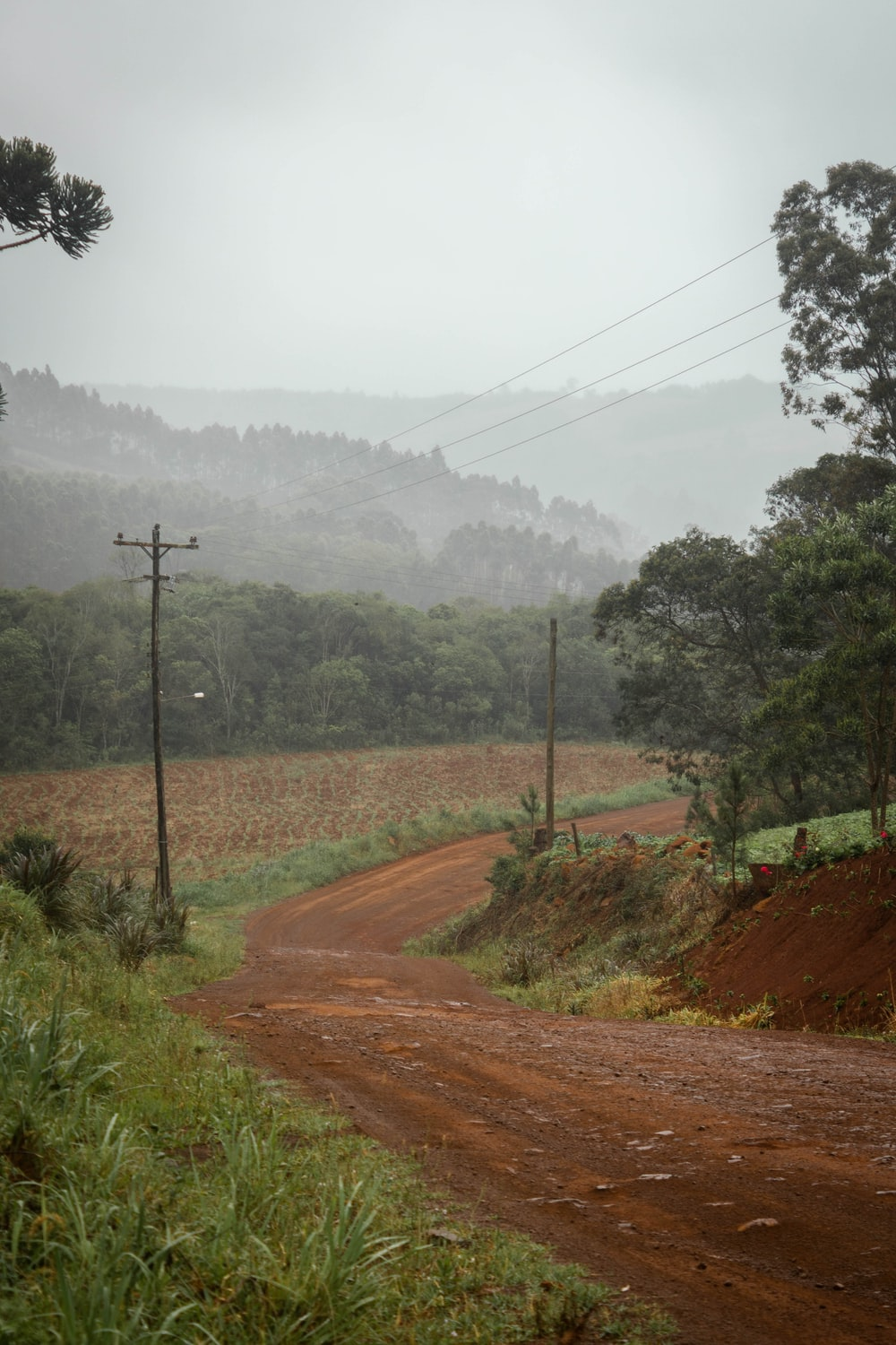 dirt road during daytime