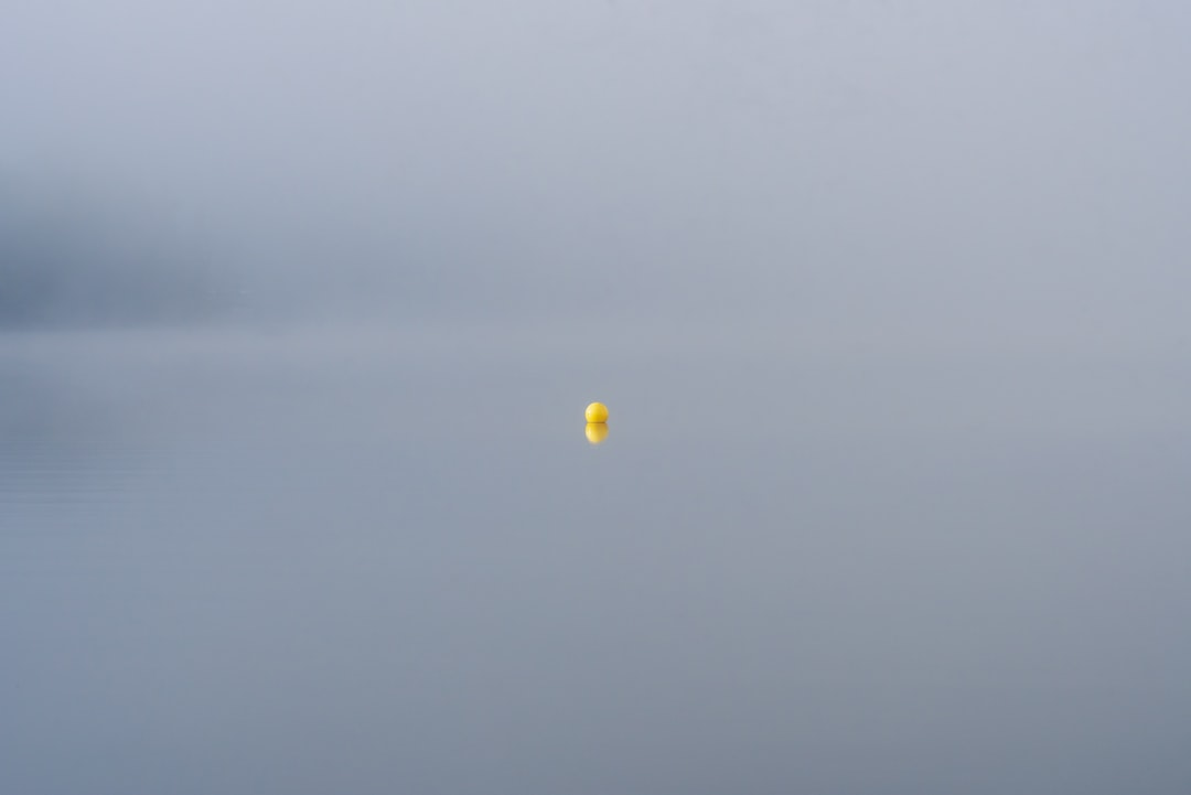 On a foggy lake in Northern Michigan, this buoy was just about all I could see from the dock.