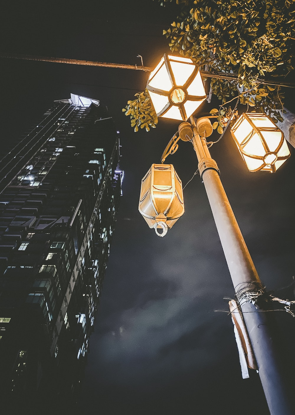 turned-on lamp posts at night