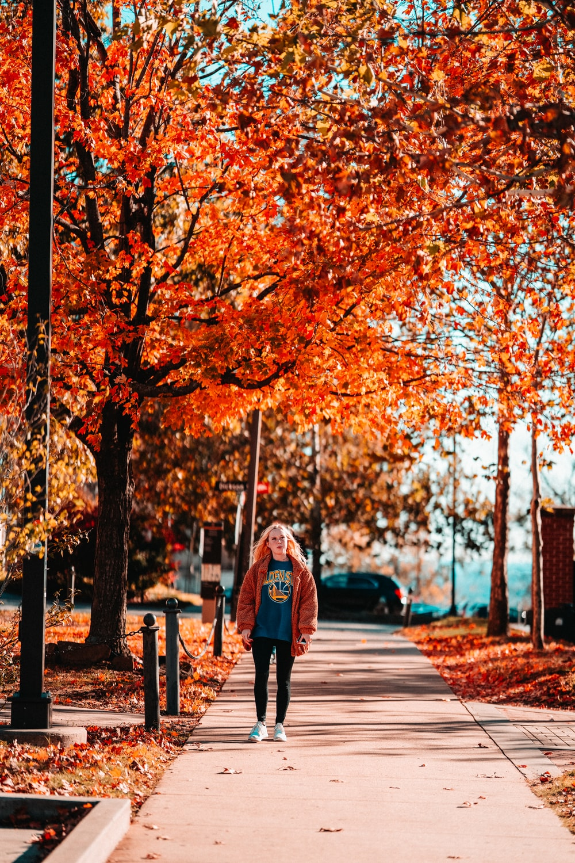 woman walking on pathway between trees