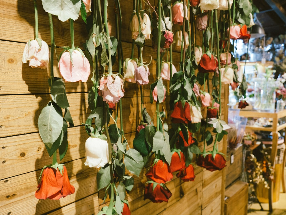 flowers hanging from wall