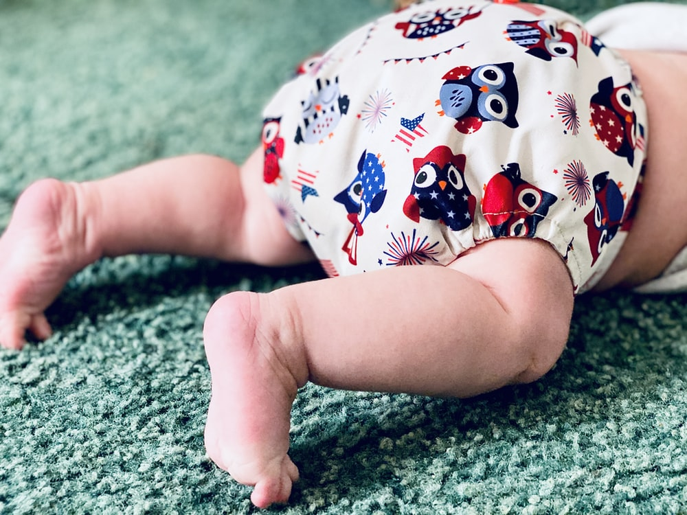 white and red owl print diaper