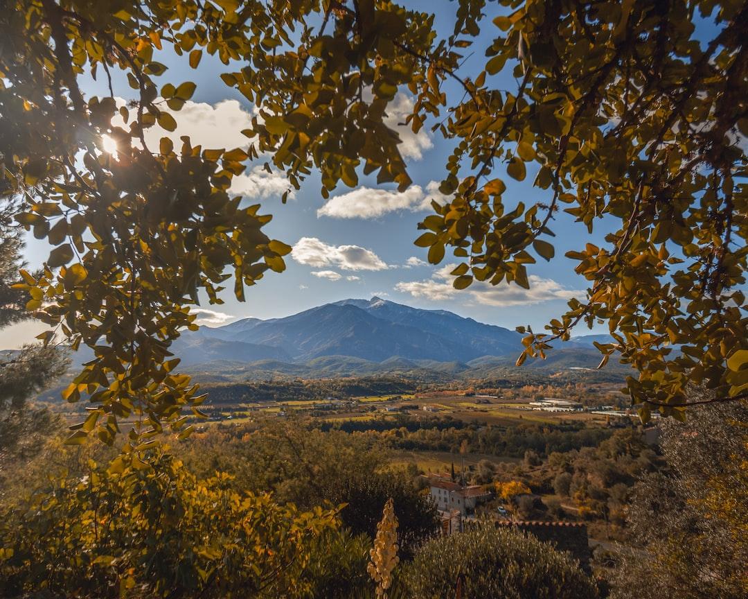 Massif du Canigou - Pyrénées Orientales - France