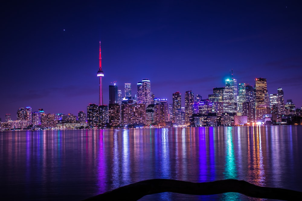 city with high-rise buildings viewing body of water during night time