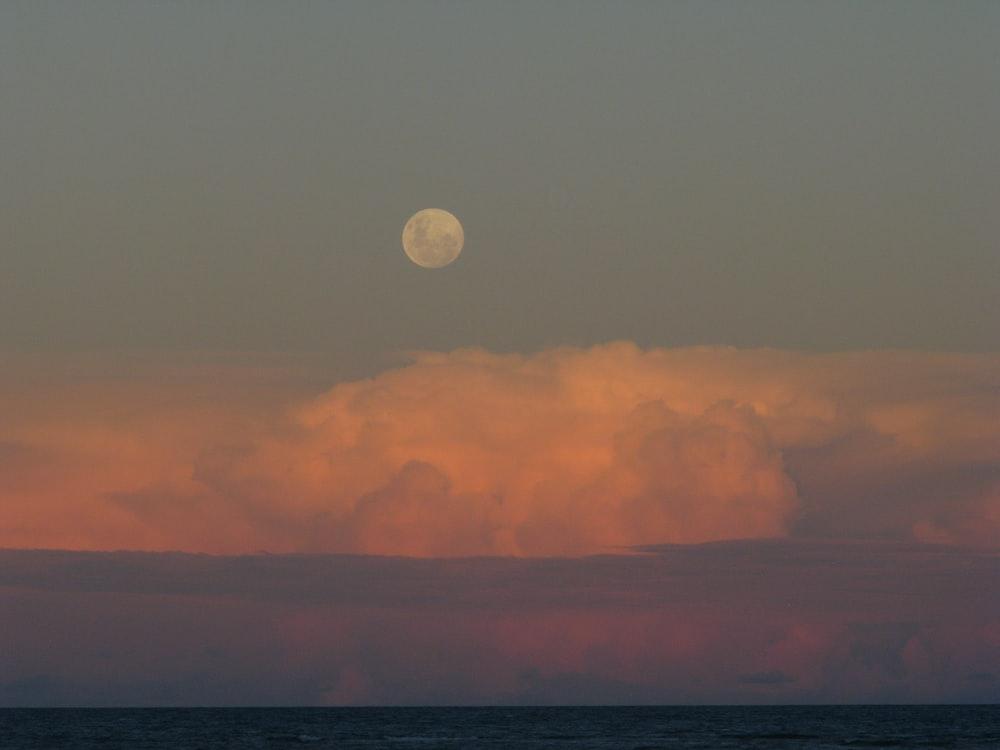 white moon decor