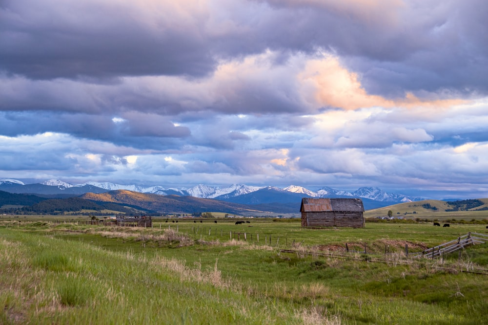 brown barn on grass field