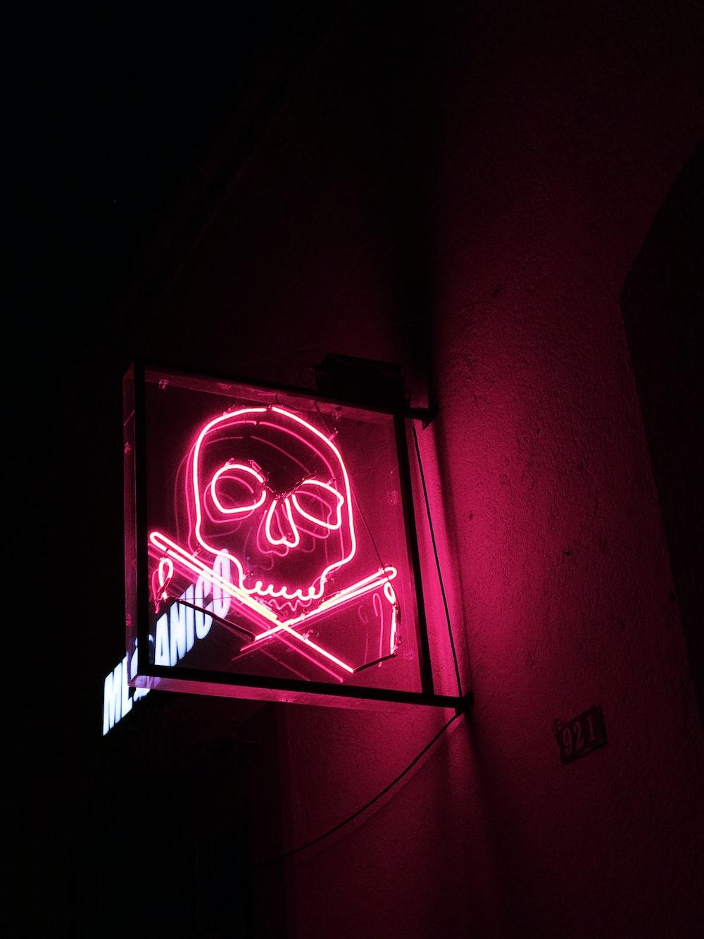 skull neon signage turned on