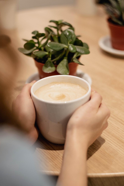 cup of latte beside jade plant