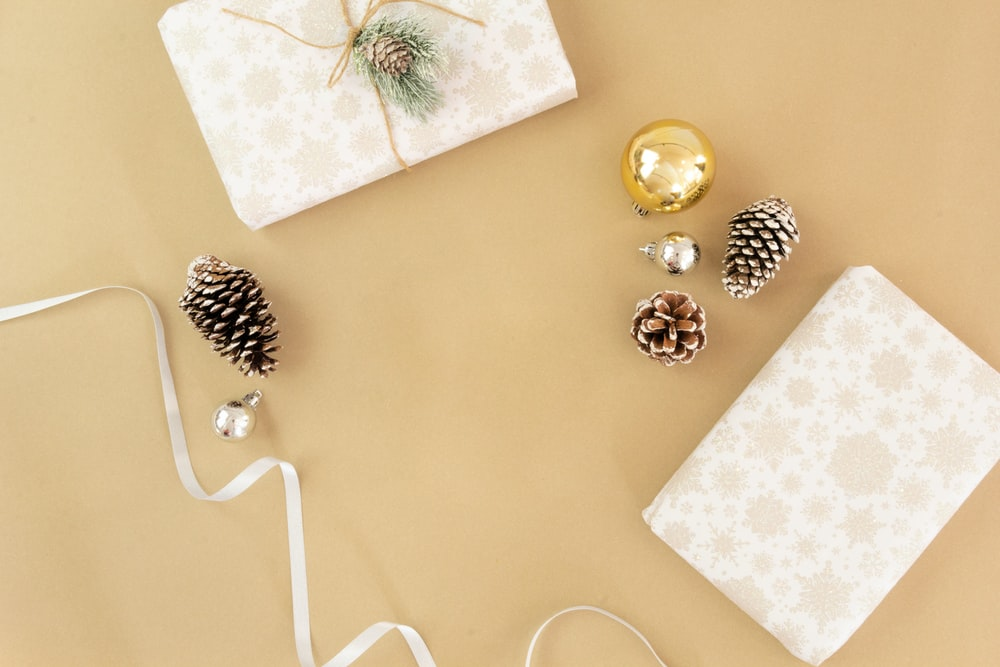 flat lay photography of pine cones