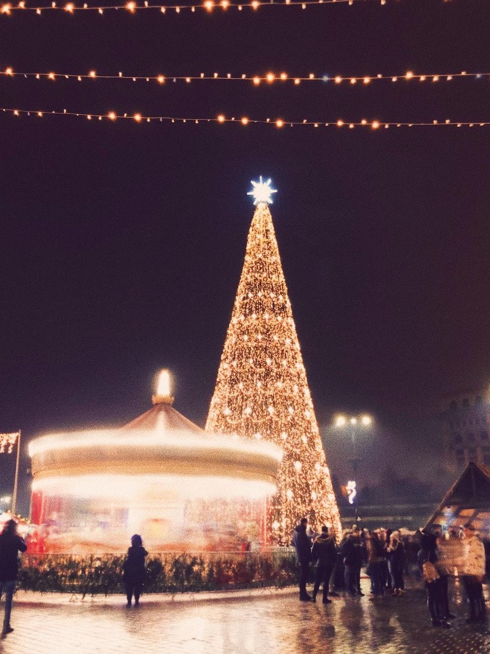 people standing outside beside christmas tree