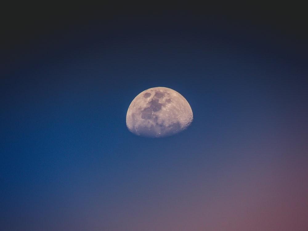 moon digital wallpaper