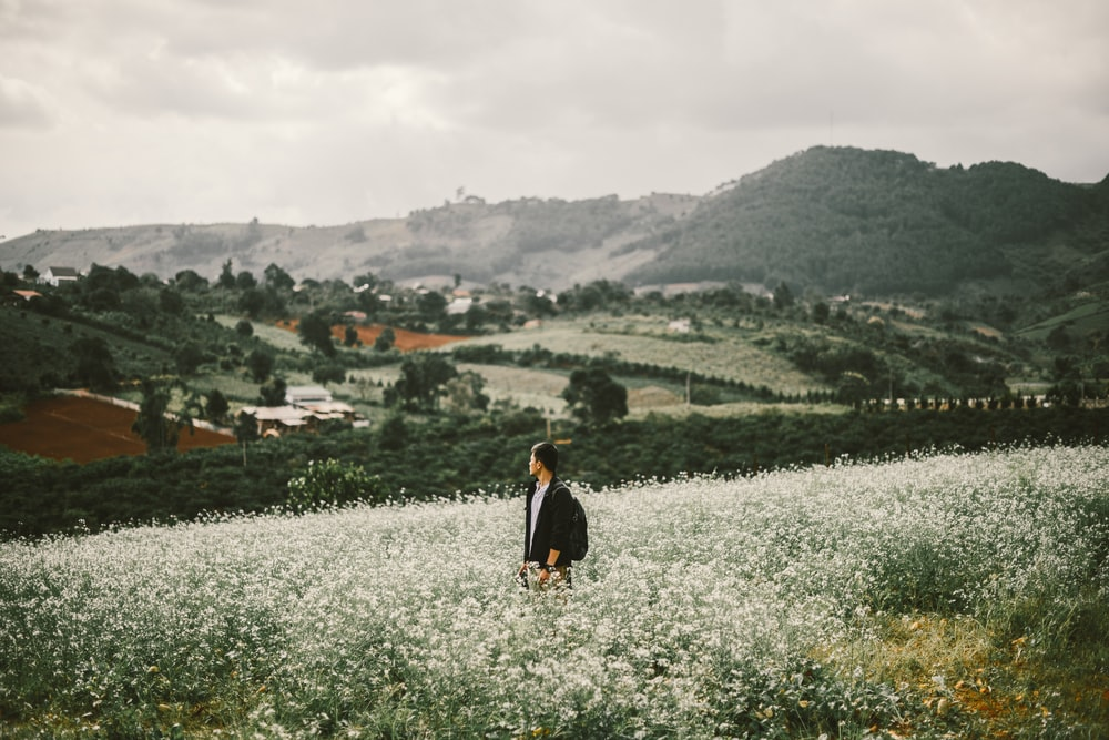 man standing surrounded with white flowers during daytime