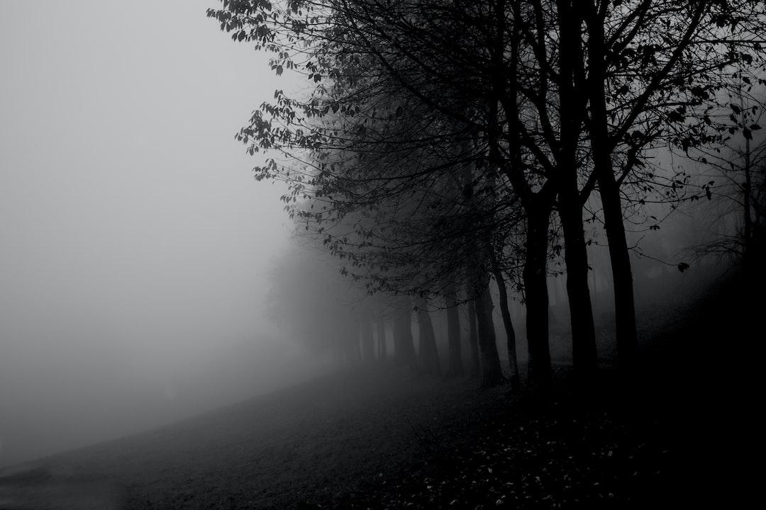 Mysterious mist.