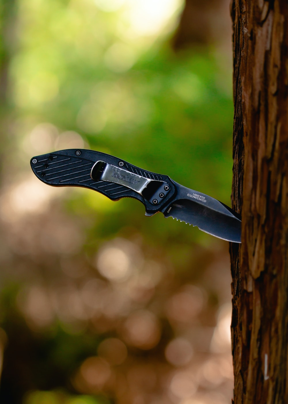 black pocket knife stick in tree trunk