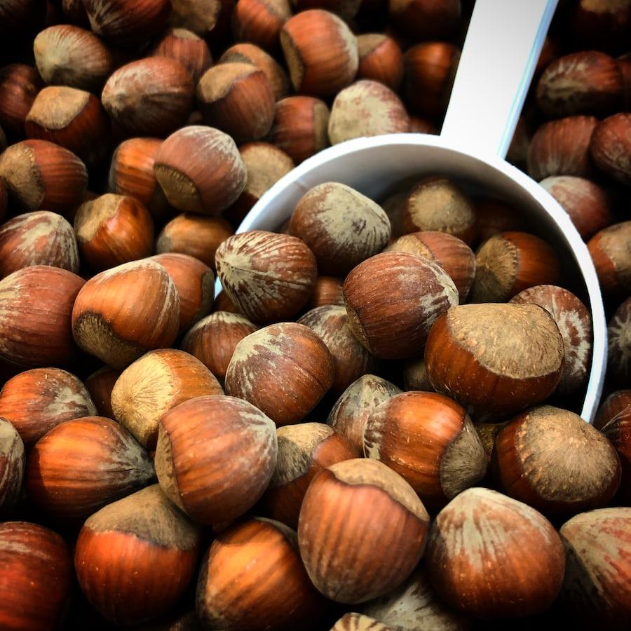 Hazelnut picture