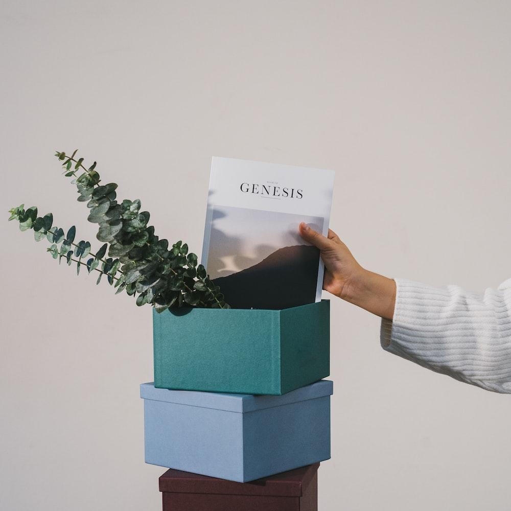 Genesis in box