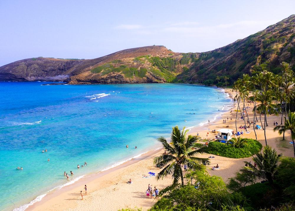 Hawái lanzó la iniciativa Malama Hawaii. Se busca que los turistas realicen acciones favorables en la localidad. Y puedes tener alojamiento gratis.