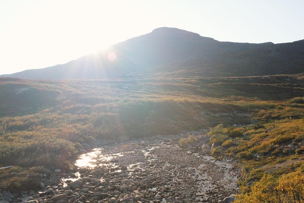 stream near mountain during daytime