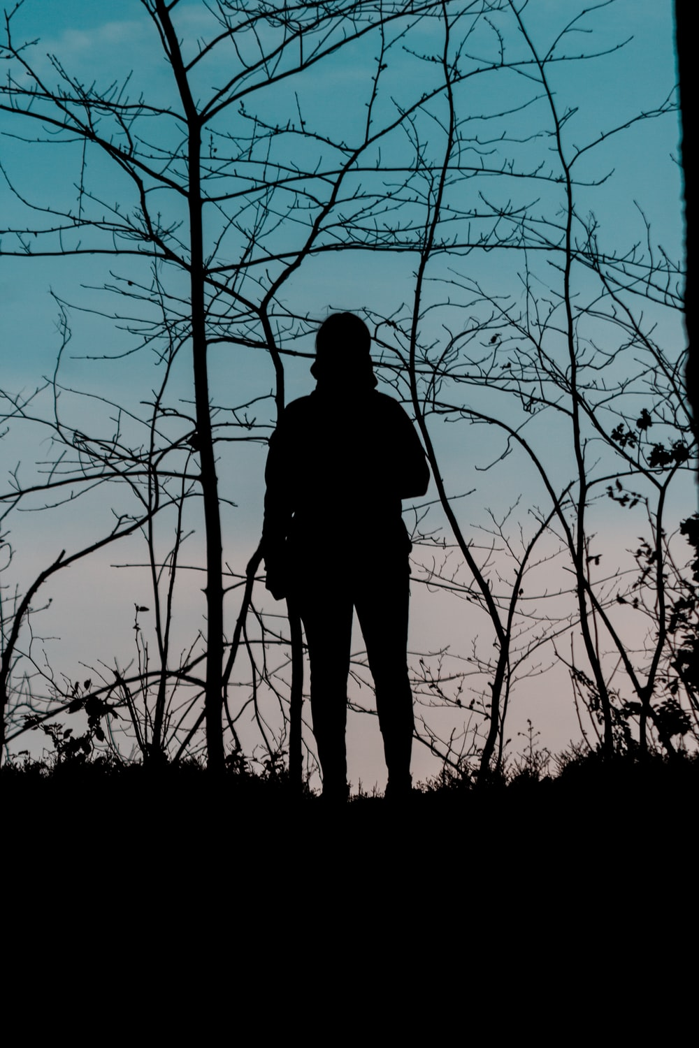 silhouette of woman photograph