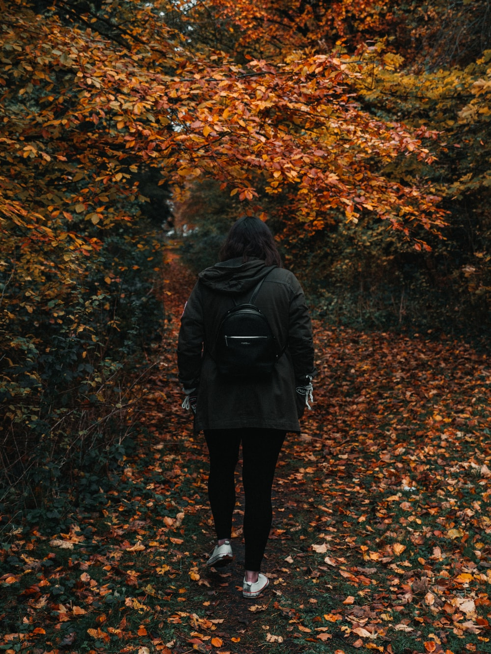 person in black hoodie in front of brown tree