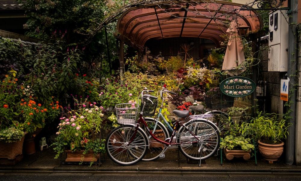 two bikes parked in garden