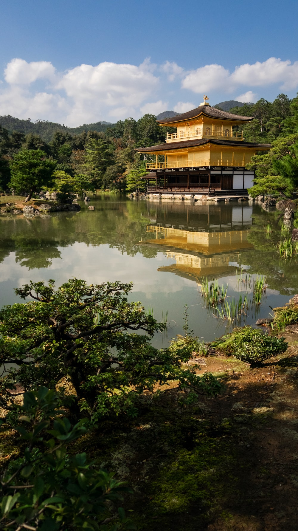 yellow temple near trees facing body of water